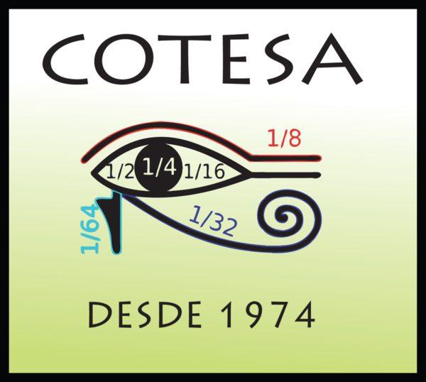 Cotesa Costa Rica Ricardo Cartín