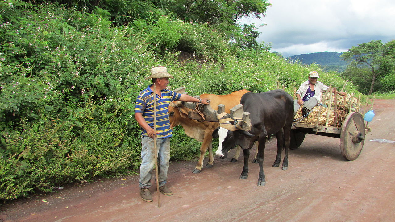 Nuevo Gualcho, El Salvador